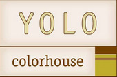 yolo colorhouse romanov painting1 Paint Options